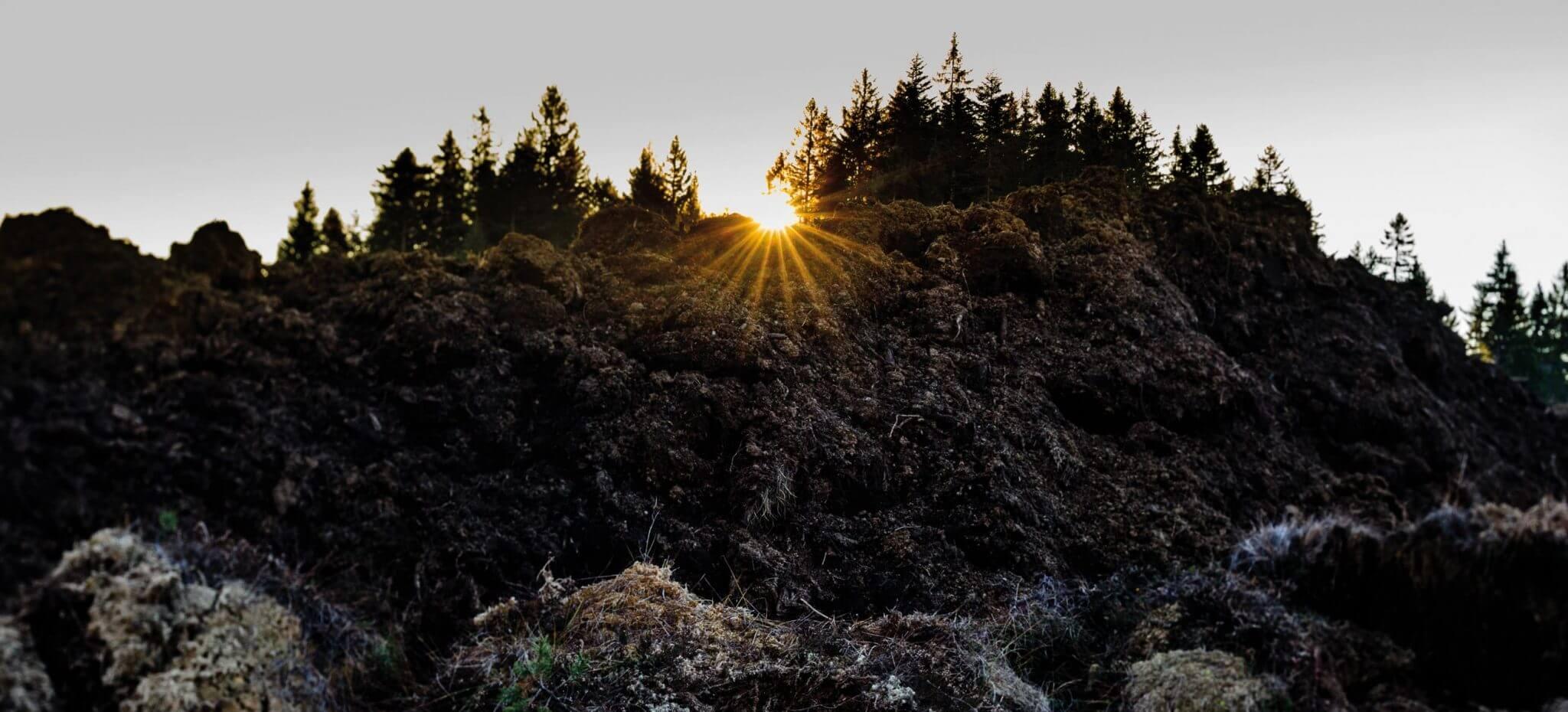 Sonnenaufgang über dem Hochmoor von Garanas