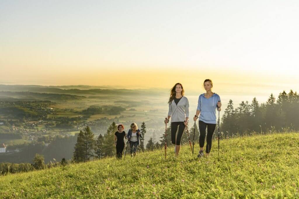 eine Gruppe von Personen beim Nordic Walking im steirischen Schilcherland