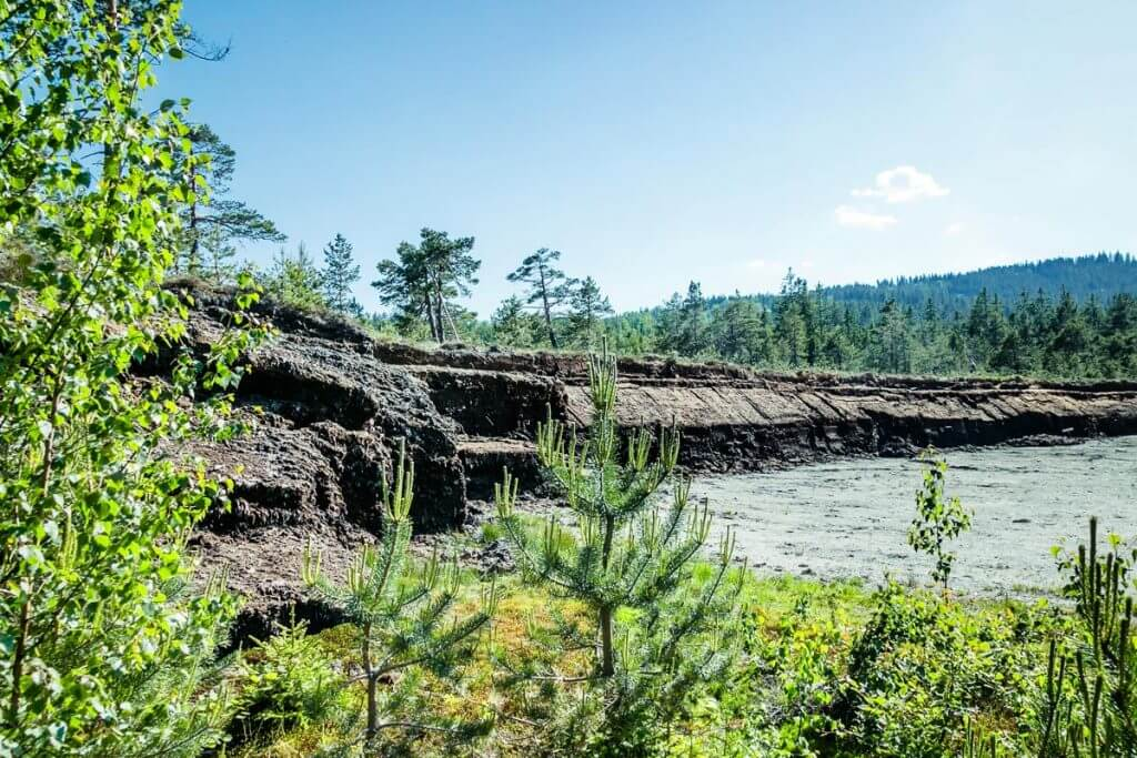 die beeindruckende Moorwand des Hochmoores von Garanas