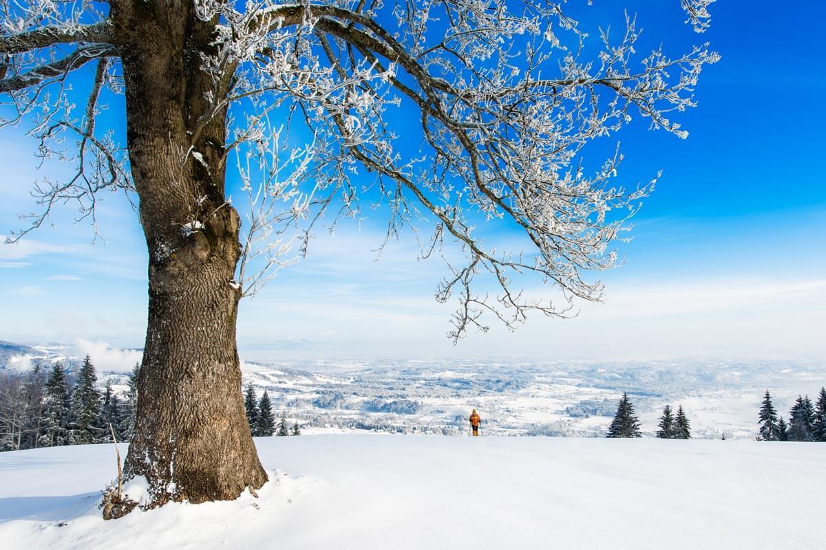 Bild einer Winterlandschaft mit Blick über Schwanberg