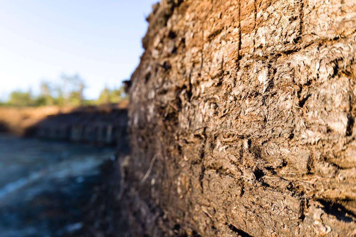 Nahaufnahme der Moorwand der Moorstecherei Hochmoor von Garanas