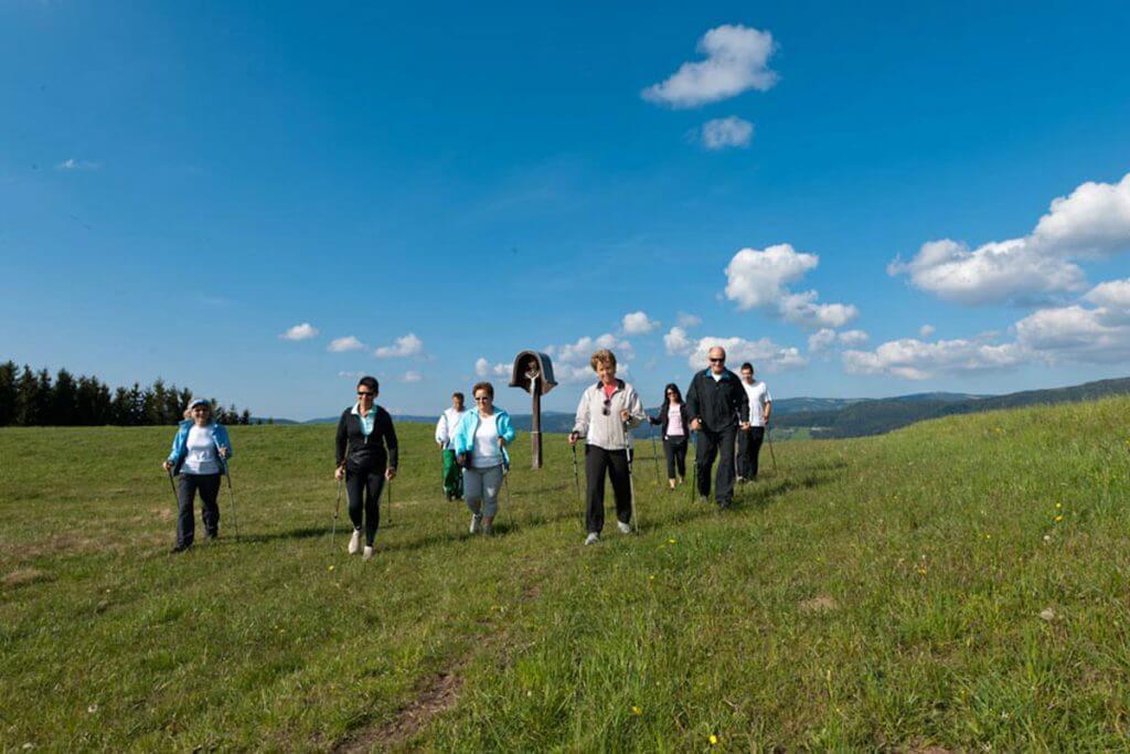 eine Gruppe walkender Personen auf einer Wiesenlandschaft