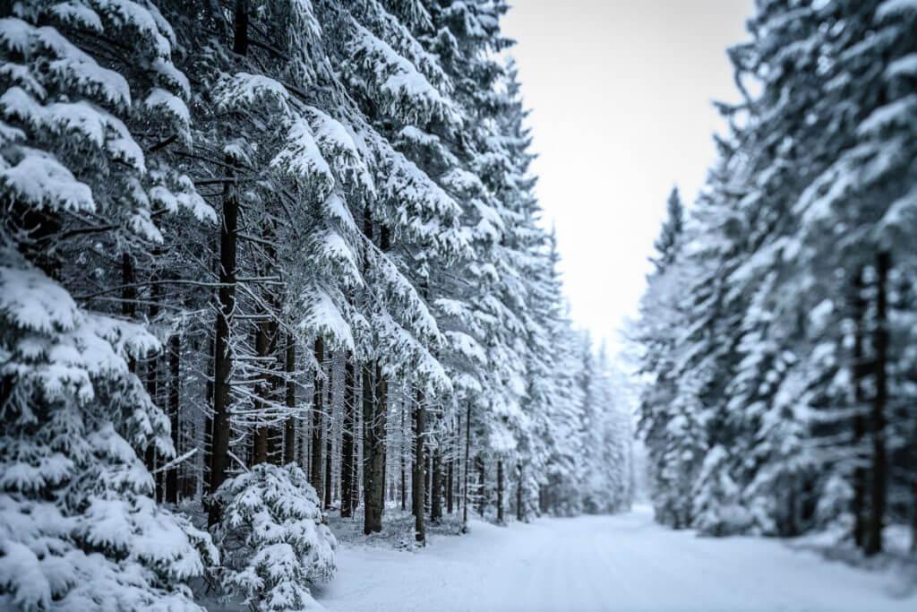 einsame Straße einer Winterlandschaft
